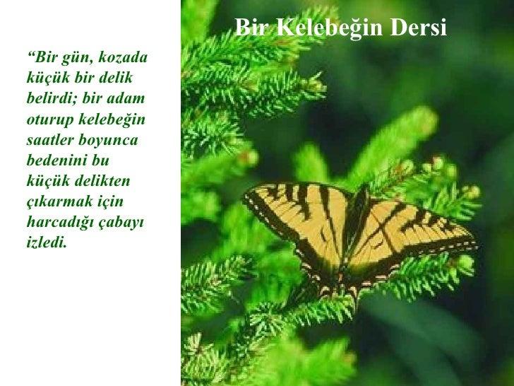 """Bir Kelebe ğ in Dersi """" Bir g ü n, kozada k üçü k bir delik belirdi; bir adam oturup kelebe ğ in saatler boyunca bedenini ..."""
