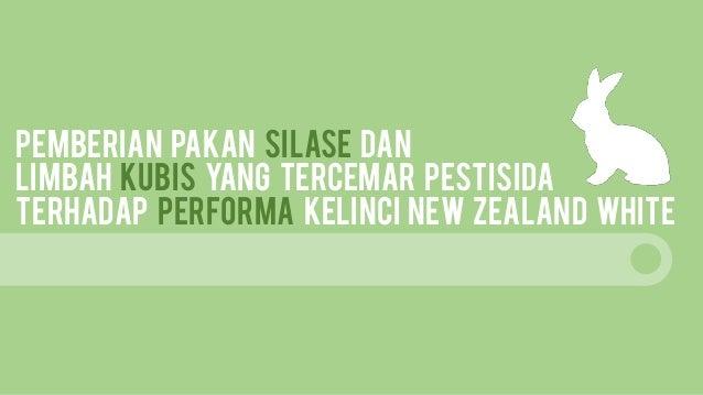 PEMBERIAN PAKAN SILASE DAN LIMBAH KUBIS YANG TERCEMAR PESTISIDA TERHADAP PERFORMA KELINCI NEW ZEALAND WHITE