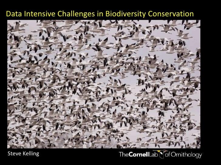Data Intensive Challenges in Biodiversity Conservation<br />Steve Kelling<br />