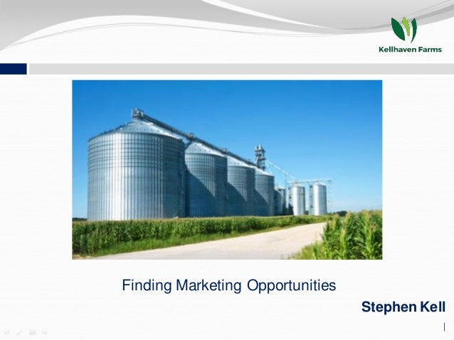 Finding Marketing Opportunities Stephen Kell |