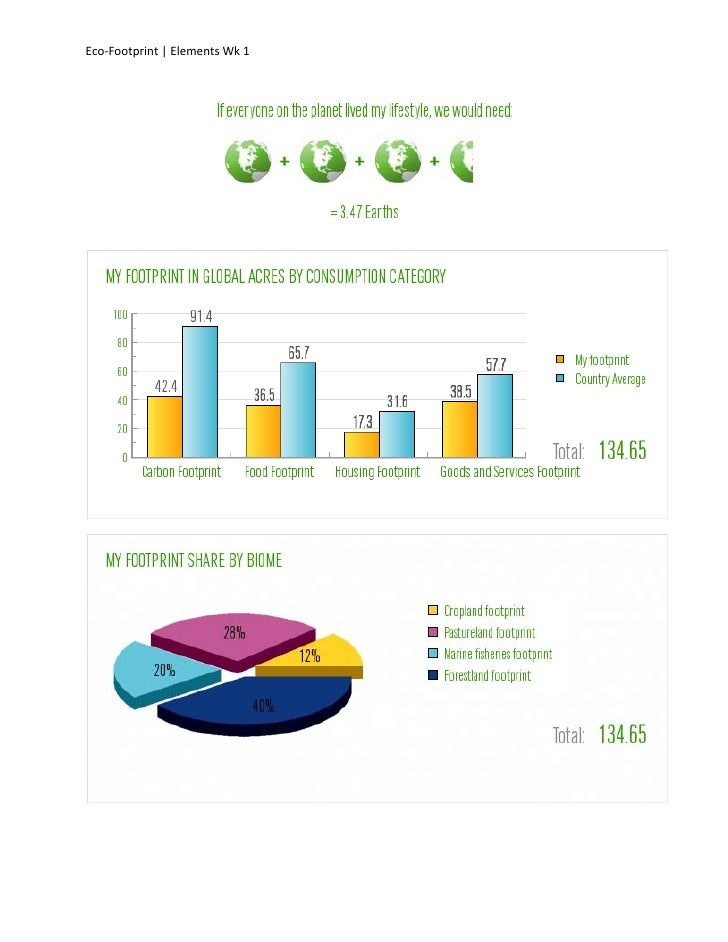 Eco-Footprint | Elements Wk 1
