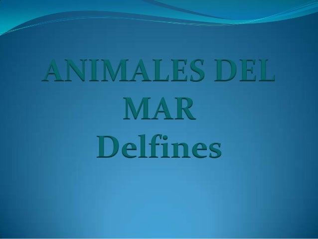 ANIMALES DEL MAR Delfines