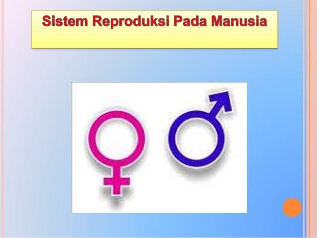 Sistem reproduksi pada manusia akan mulai berfungsi ketika seseorang mencapai kedewasaan (pubertas) atau masa akil baligh....