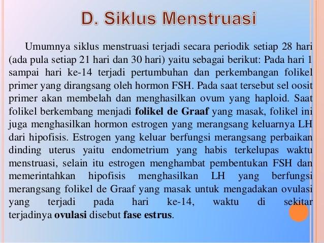 Daur Menstruasi