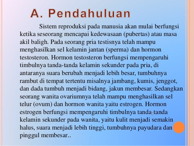 1. Organ Reproduksi Pada Pria a. Testis/Buah Zakar Jumlah 1 pasang, terdapat dalam kantong pelindung yang disebut skrotum ...