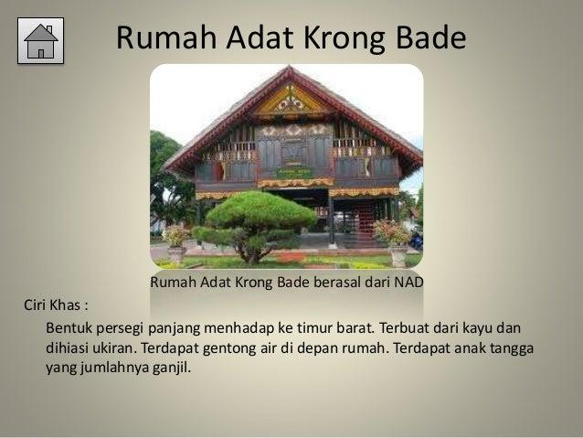 rumah adat indonesia 8 638