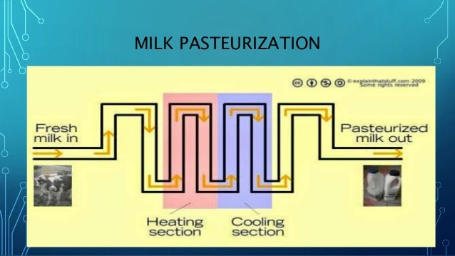 Instrumentation And Control For Milk Pasteurization And