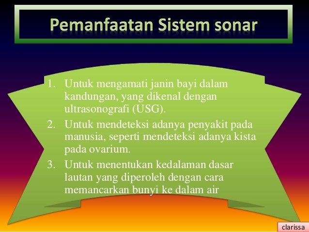 Materi tentang Indera Pengdengaran dan Sistem Sonar