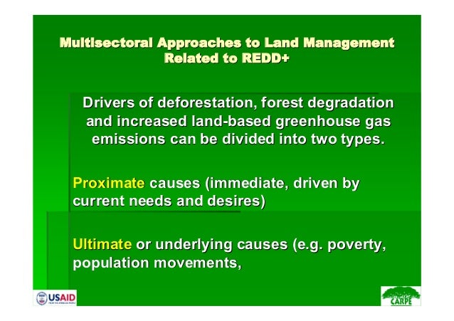 MultisectoralMultisectoral Approaches to Land ManagementApproaches to Land ManagementRelated to REDD+Related to REDD+Drive...