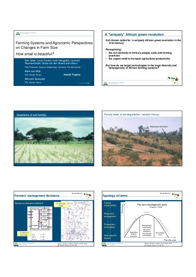 Farming Systems and Agronomic Perspectives on Changes in Farm Size How small is beautiful? Ken Giller, Linus Franke, Huib ...