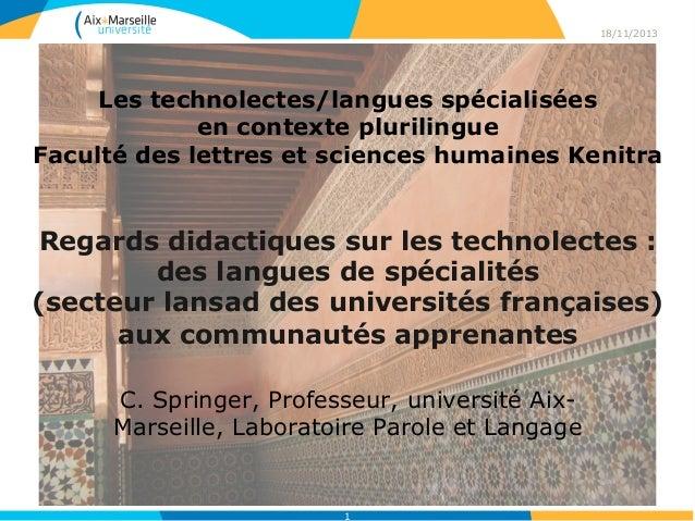 1 Les technolectes/langues spécialisées en contexte plurilingue Faculté des lettres et sciences humaines Kenitra Regards d...