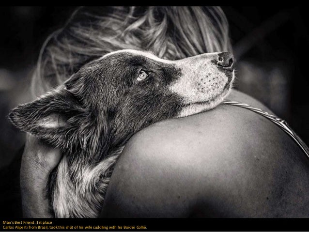 Man's Best Friend: 1st place Carlos Aliperti from Brazil, took this shot of his wife cuddling with his Border Collie.
