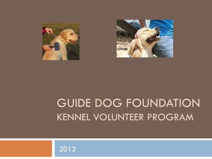 GUIDE DOG FOUNDATIONKENNEL VOLUNTEER PROGRAM2012