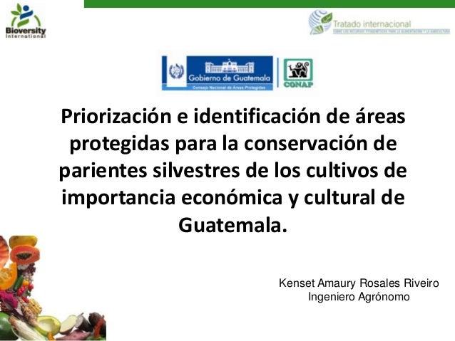 Priorización e identificación de áreas protegidas para la conservación deparientes silvestres de los cultivos deimportanci...