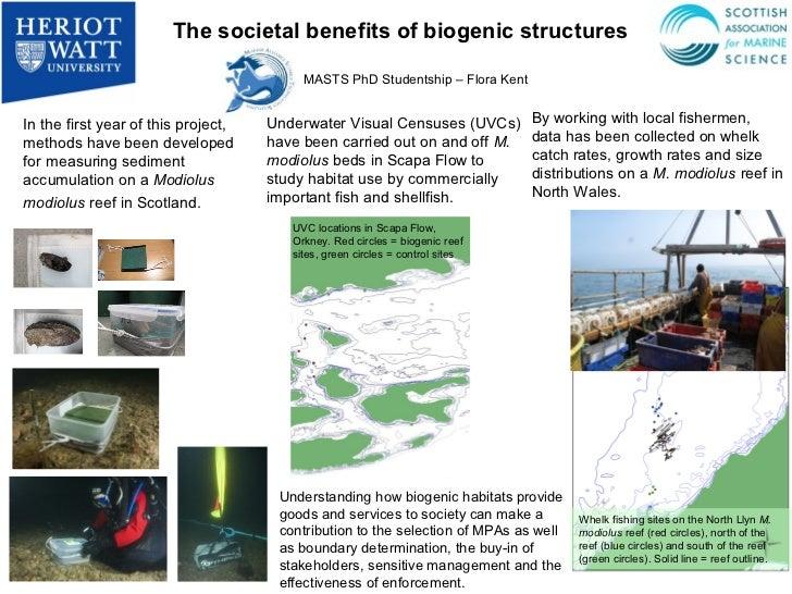 The societal benefits of biogenic structures                                          MASTS PhD Studentship – Flora KentIn...