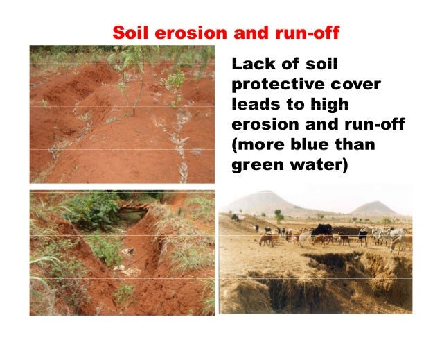 The status of soil resources needs and priorities towards for About soil resources
