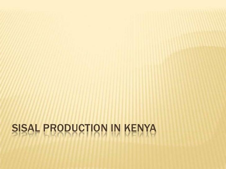 SISAL PRODUCTION IN KENYA