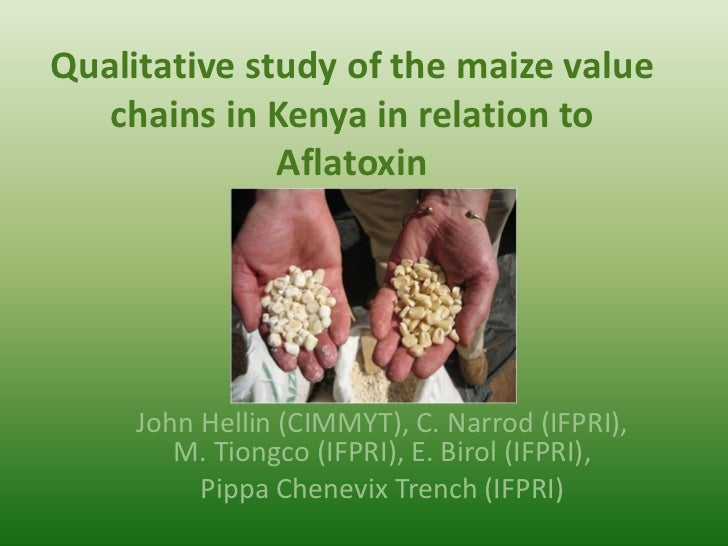 Qualitative study of the maize value   chains in Kenya in relation to              Aflatoxin     John Hellin (CIMMYT), C. ...