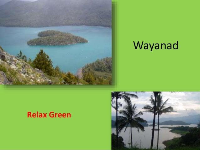 Wayanad Relax Green