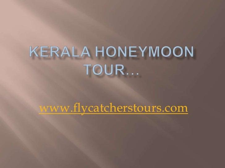 www.flycatcherstours.com