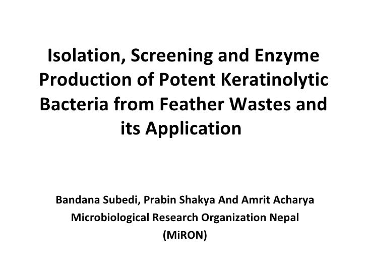 Isolation, Screening and EnzymeProduction of Potent KeratinolyticBacteria from Feather Wastes and          its Application...