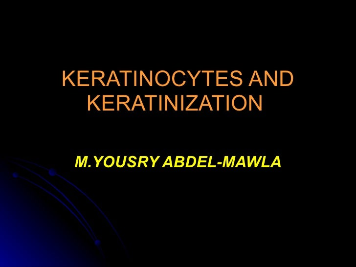 KERATINOCYTES AND KERATINIZATION   M.YOUSRY ABDEL-MAWLA