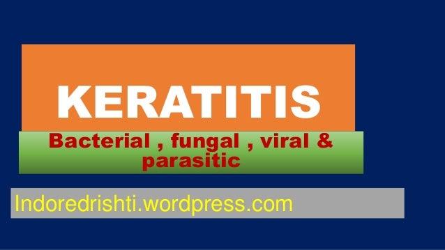 KERATITIS Bacterial , fungal , viral & parasitic Indoredrishti.wordpress.com