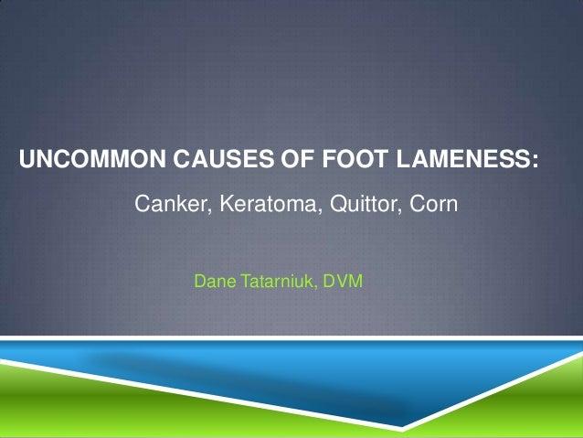 UNCOMMON CAUSES OF FOOT LAMENESS:       Canker, Keratoma, Quittor, Corn            Dane Tatarniuk, DVM