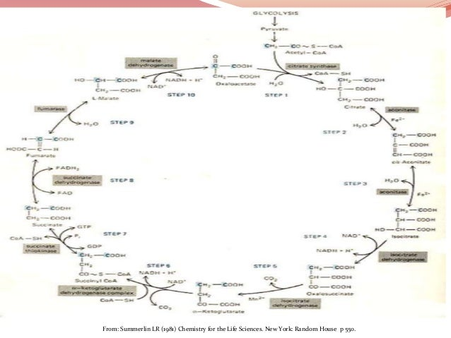 From: Summerlin LR (1981) Chemistry for the Life Sciences. New York: Random House p 550.