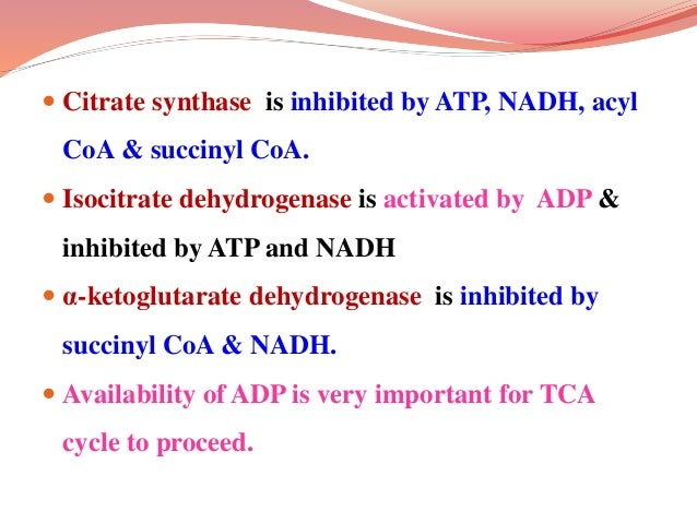 Amphibolic nature of the TCA cycle  TCA cycle is both catabolic & anabolic in nature, called as amphibolic.  Since vario...