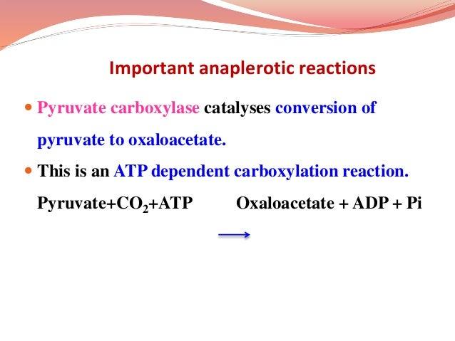  α- ketoglutarate can also be synthesized from glutamate by glutamate dehydrogenase. Glutamate + NAD(P) + H2O α- ketoglut...