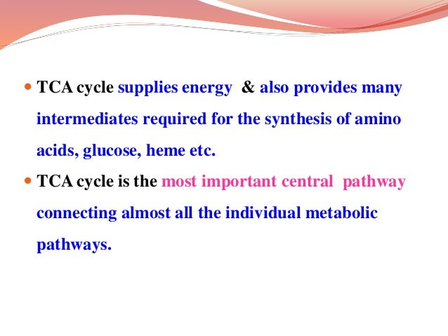  TCA cycle supplies energy & also provides many intermediates required for the synthesis of amino acids, glucose, heme et...