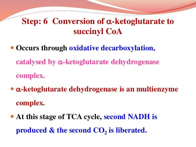 Step: 6 Conversion of -ketoglutarate to succinyl CoA  Occurs through oxidative decarboxylation, catalysed by -ketogluta...