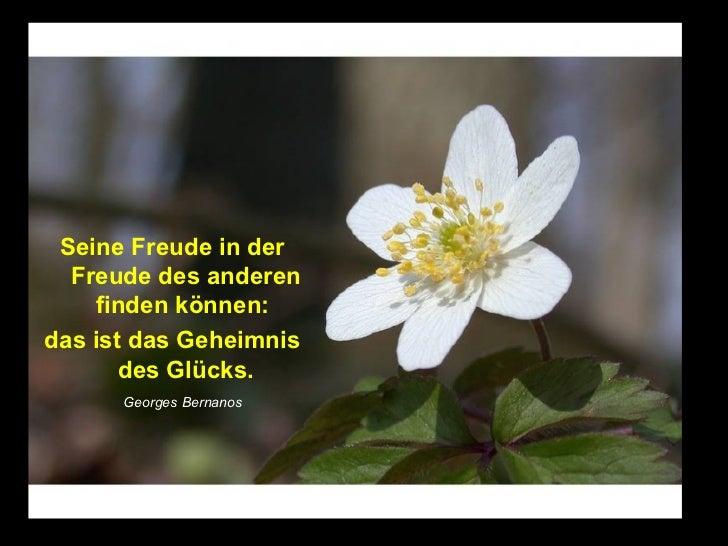 Seine Freude in der  Freude des anderen    finden können:das ist das Geheimnis       des Glücks.      Georges Bernanos