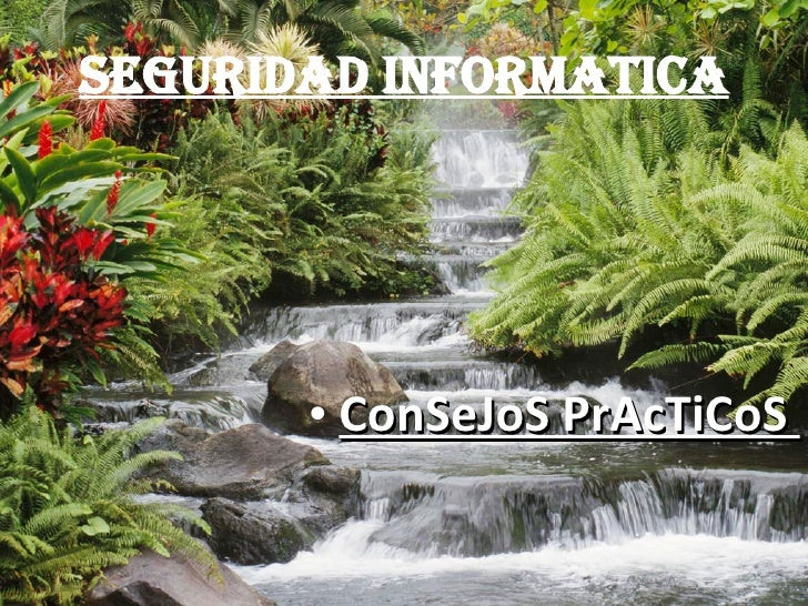 SEGURIDAD INFORMATICA <ul><li>ConSeJoS PrAcTiCoS  </li></ul>