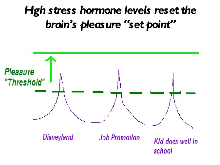 Image result for hedonic set point and dopamine and addiction