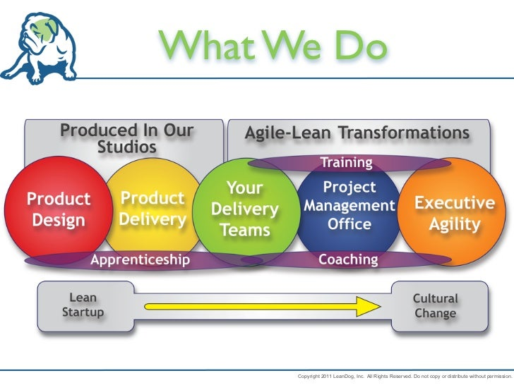 What We Do      Copyright 2011 LeanDog, Inc. All Rights Reserved. Do not copy or distribute without permission.