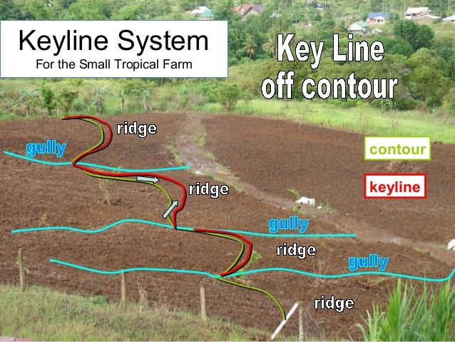 keyline contour Keyline System For the Small Tropical Farm