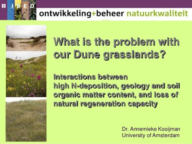 What is the problem with our Dune grasslands? Interactions between high N-deposition, geology and soil organic matter cont...