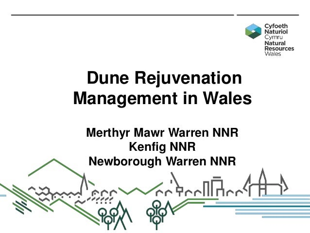 Dune Rejuvenation Management in Wales Merthyr Mawr Warren NNR Kenfig NNR Newborough Warren NNR