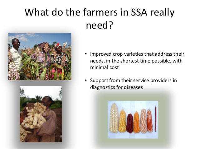 What do the farmers in SSA reallyneed?• Improved crop varieties that address theirneeds, in the shortest time possible, wi...