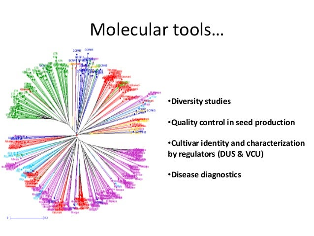 Molecular tools…•Diversity studies•Quality control in seed production•Cultivar identity and characterizationby regulators ...