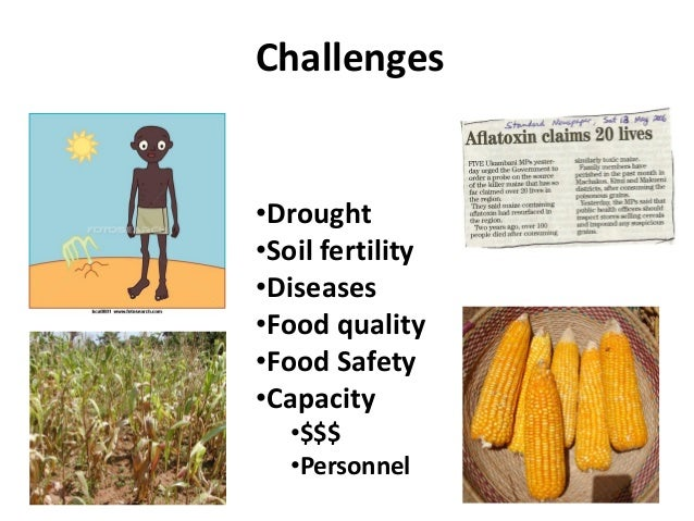 Challenges•Drought•Soil fertility•Diseases•Food quality•Food Safety•Capacity•$$$•Personnel
