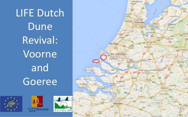 LIFE Dutch Dune Revival: Voorne and Goeree