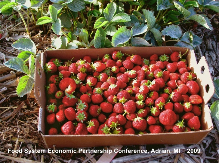 Food System Economic Partnership Conference, Adrian, MI   2009
