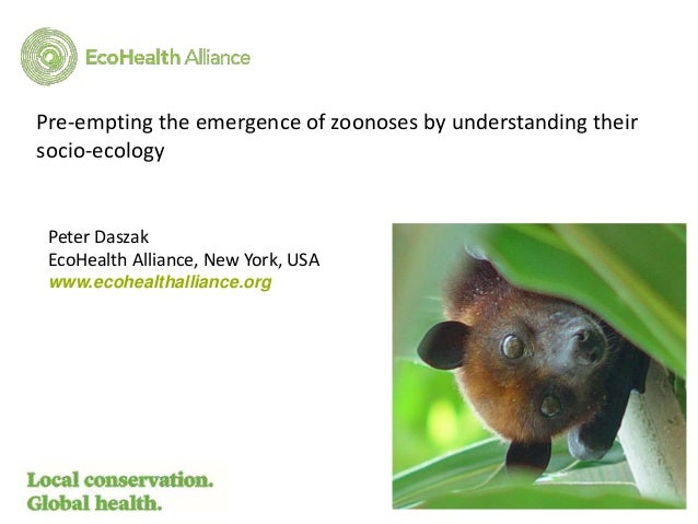 Peter Daszak EcoHealth Alliance, New York, USA www.ecohealthalliance.org Pre-empting the emergence of zoonoses by understa...