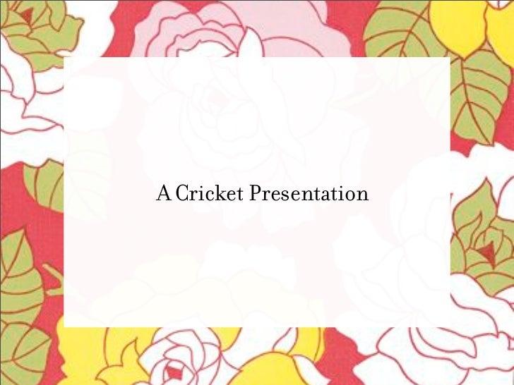 A Cricket Presentation