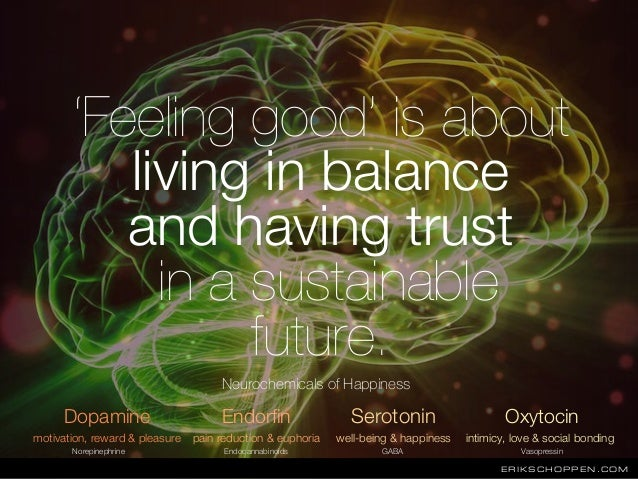 ERIKSCHOPPEN.COM 'Feeling good' is about living in balance and having trust in a sustainable future. Dopamine Endorfin Ser...