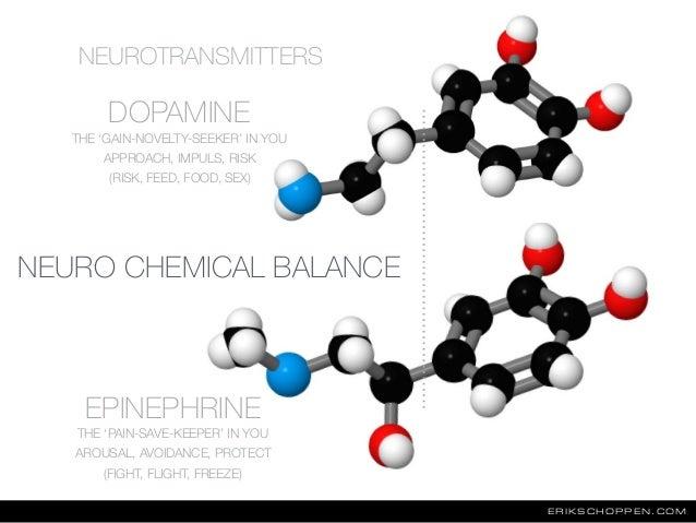 ERIKSCHOPPEN.COM DOPAMINE EPINEPHRINE NEUROTRANSMITTERS THE 'GAIN-NOVELTY-SEEKER' IN YOU APPROACH, IMPULS, RISK (RISK, FEE...