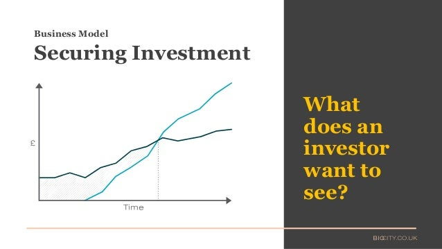What does an investor want to see? Business Model Securing Investment